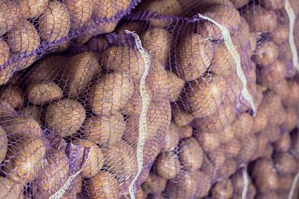 Rostlinná a živočišná výroba, produkce mléka, bramborárna