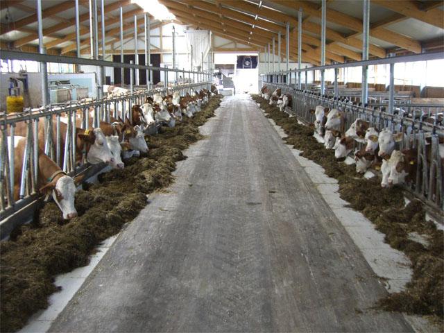 Krmné žlaby - výroba