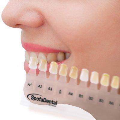 Výroba dentálních materiálů Jičín