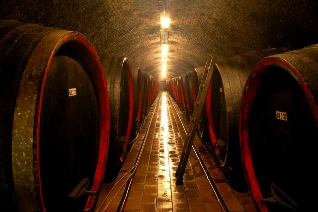 Vinný sklep Lednice,vinařské programy,putování za vínem,degustace