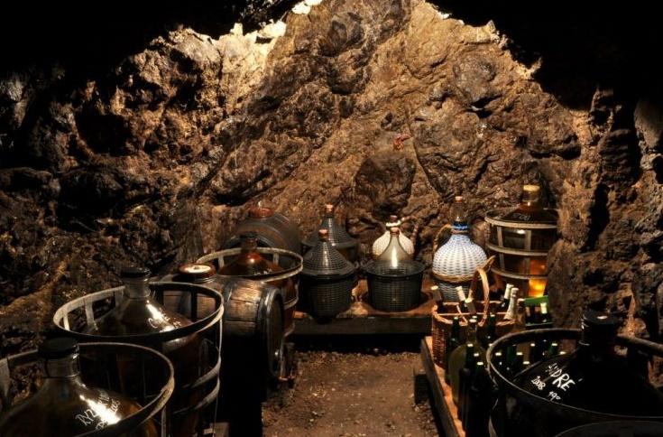 Vinný sklep Mikulov, prodej vína, U Hrdličků
