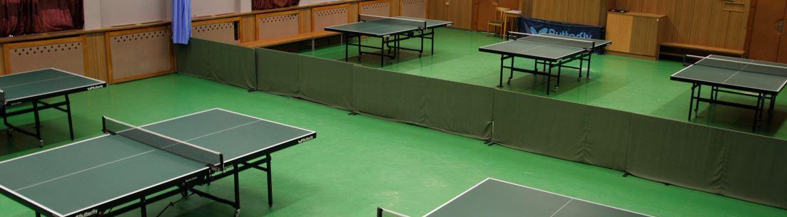 Areále házené, hokejbalu, stolního tenisu i volejbalu
