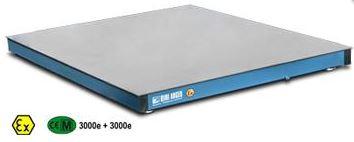 Podlahové váhy EEx - do prostředí se zvýšeným rizikem výbuchu