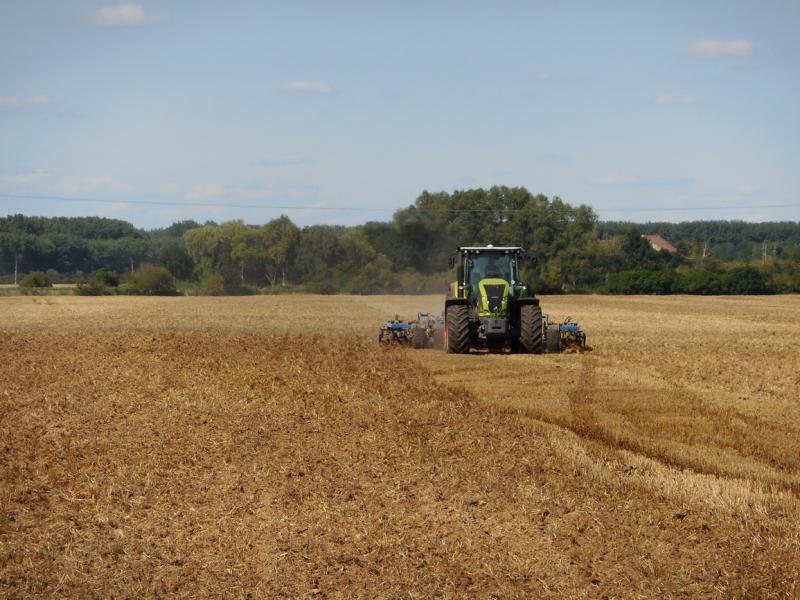Rostlinná výroba a prodej obilí