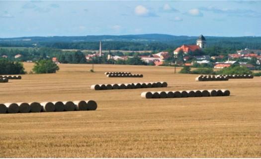 Zemědělská produkce obilovin, řepky, mléka, provoz bioplynové stanice