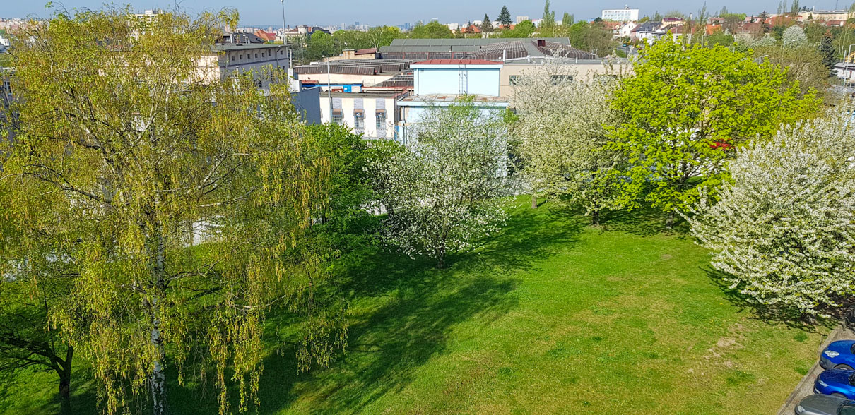 Příjemné místo pro jednání s klienty, pronájem Praha 10