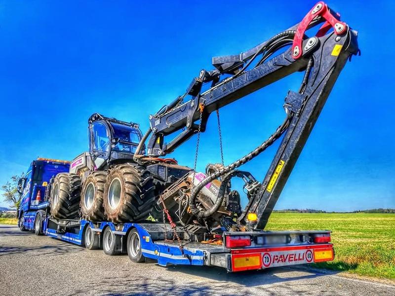 Těžba dříví pomocí ruční i harvestorové techniky