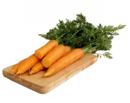 Ovoce i zelenina, mléčné a masné výrobky bez přidaných éček, Holubice