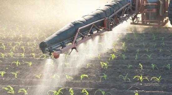 Listová hnojiva Pardubice - pravidelná výživa půdy pro efektivní pěstování rostlin