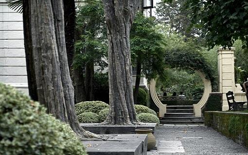 Statické zajišťování korun stromů