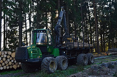FOREST TEAM s.r.o., kácení a přibližování dříví, harvestory
