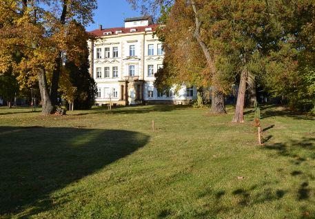 Rehabilitační péče Nemocnice Hořice