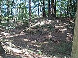 Obecní úřad Strašnov, v lesích se nachází plošina po dřevěné tvrzi