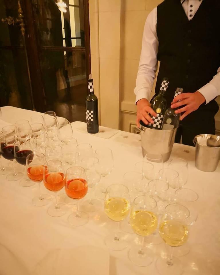 Řízené degustace a ochutnávka vín Mikulov