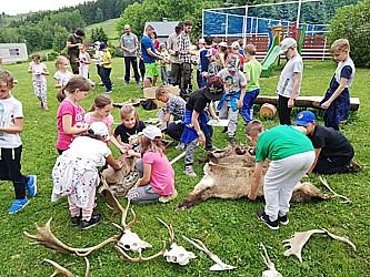 Základní škola s rozšířenou výukou přírodních věd, Sokolov