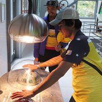 Jak funguje energie - výukový a zábavný program pro žáky mateřských a základních škol