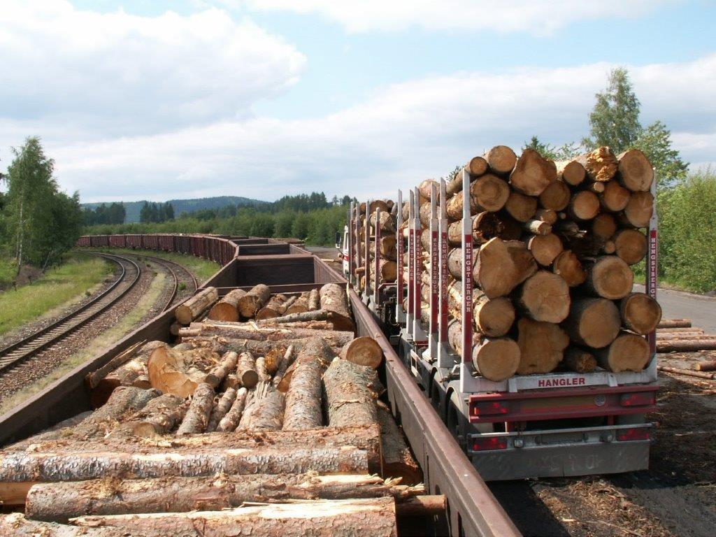 Vnitrostátní a mezinárodní přeprava dřeva, logistika pro široký dřevařský průmysl