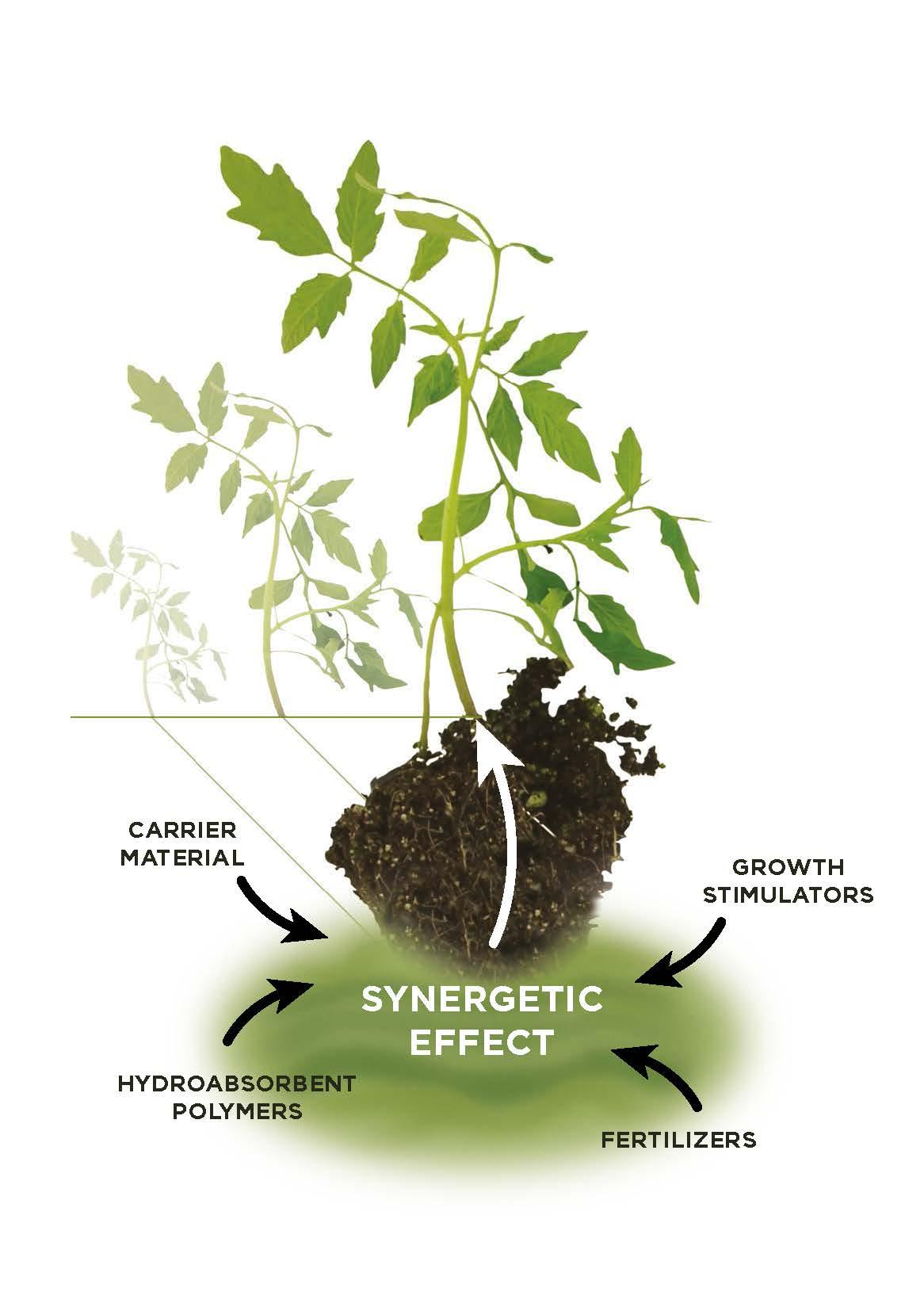Půdní kondicionéry pro výživu rostlin, keřů a stromů - TerraCottem Universal, Arbor, Turf, Complement