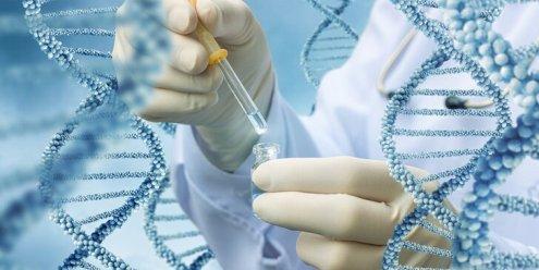 Testy určení pohlaví ptáků, diagnostika virových infekcí a chlamydií u ptactva