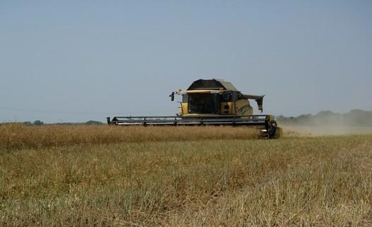 Rozmetání hnoje, mulčování i sečení píce, Dubicko u Šumperka