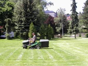 Údržba městské zeleně