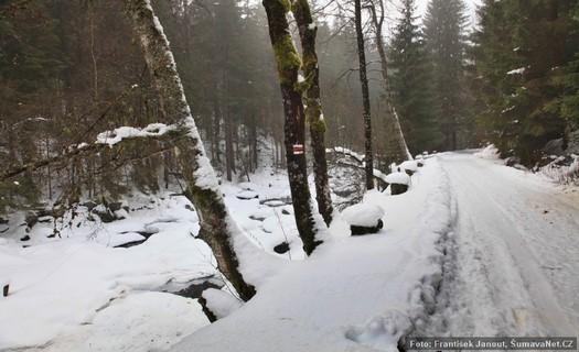 Obec s hustou sítí lyžařských stop, Srní