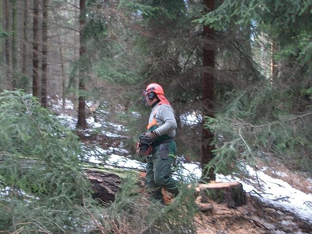 LESPRODUKT s.r.o., Kamenice nad Lipou, pěstování a těžba lesa
