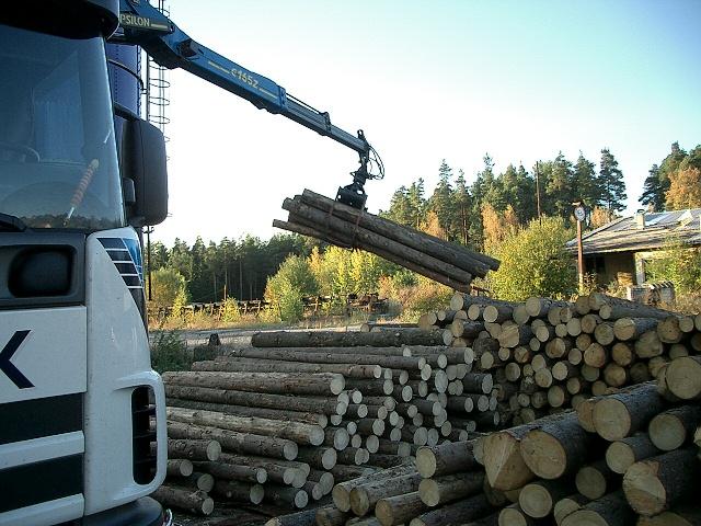 LESPRODUKT s.r.o., Kamenice nad Lipou, manipulace, nakládání a odvoz dřevní hmoty