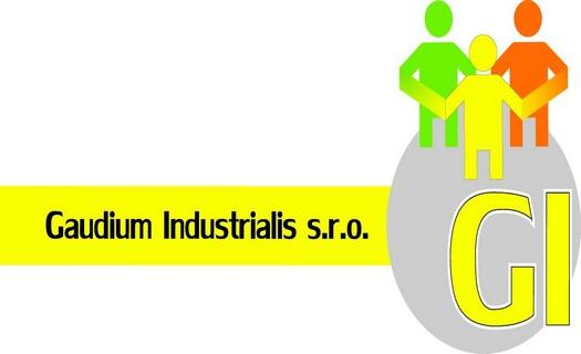 Lisování plastů a výlisků pro automobilový a elektrotechnický průmysl, výroba, montáž