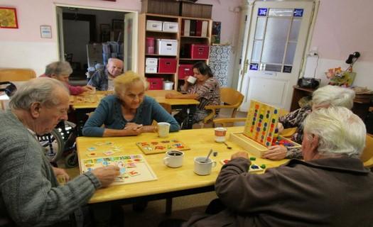 Domov seniorů pro seniory se sníženou soběstačností, ubytování a stravování, okres Mělník