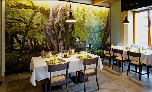 Rodinné akce - Restaurace a penzion Pod Lipami Metylovice
