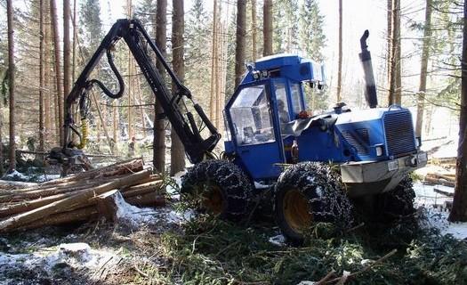 Těžba dřeva Šumava, lesnické práce, mýtní těžba dřeva, zpracování