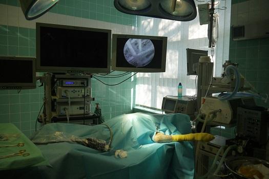 Artroskopie loketního kloubu