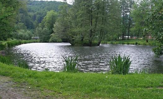 Rybaření, chov ryb Šumperk, rybník Kocián