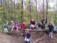 Mateřská škola s výukou angličtiny, v krásné přírodě