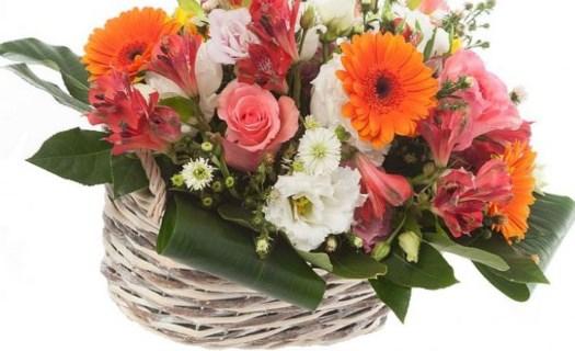 Komplexní květinový servis, doručování květin Ústí nad Labem, prodej řezaných květin, dekorace