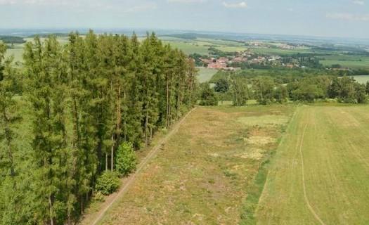 Lesní ochranná služba, myslivost