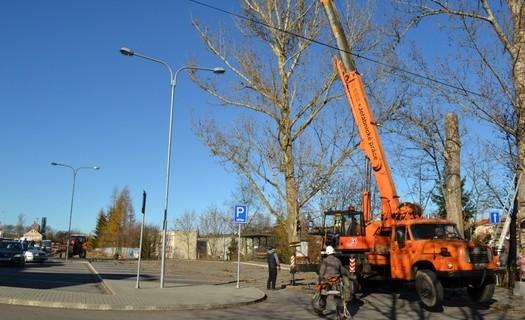 Kácení stromů služby města Náměšť nad Oslavou