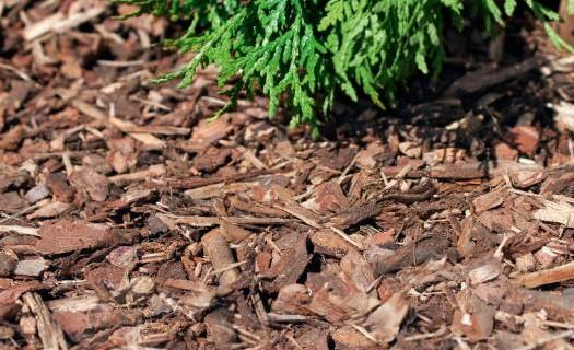 Zahradnictví, výroba substrátů, hnojiva, zemina Žár, zahradnické produkty, organická hnojiva, kůra