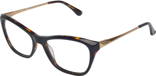 Brýle Guess, Mangom Gant, Ray Ban, Lacoste