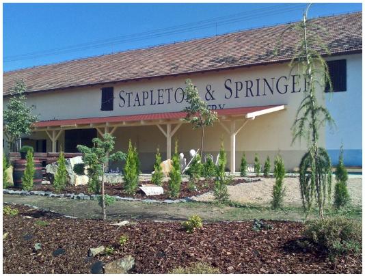 Výsledek obrázku pro stapleton-springer