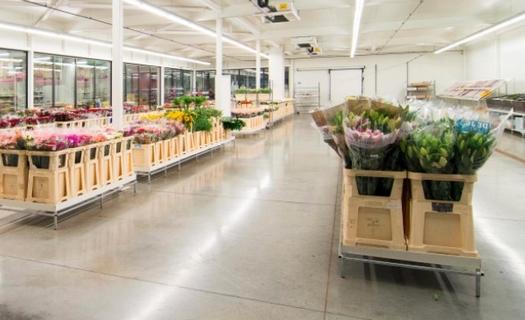 Velkoobchod s květinami a floristickými doplňky