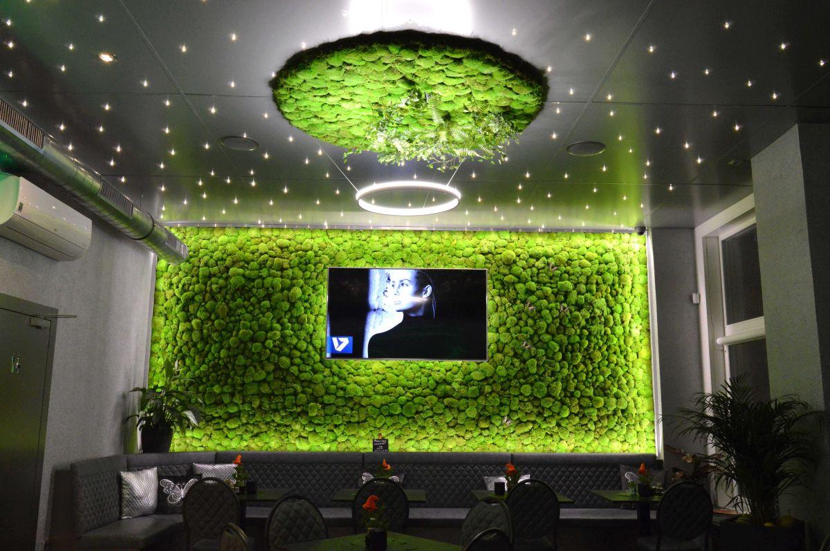 Green4Life s.r.o., zhotovení mechových stěn
