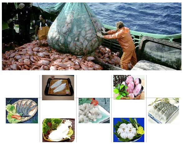 VIETNAM; Mořské plody mražené a sušené