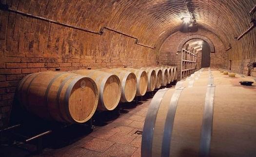 Degustace vína pro menší skupiny v archivním sklepě Pod Novosady mezi vinicemi