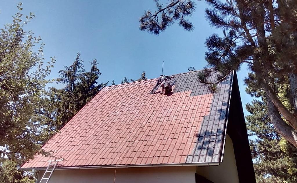 Čištění střech, okapů, nátěry podbití, opravy fasád a střech po ptactvu - i další rizikové práce ve výškách