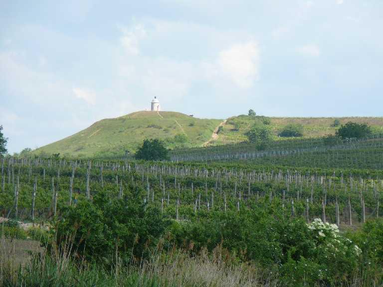 Vinařské město Velké Bílovice v Jihomoravském kraji