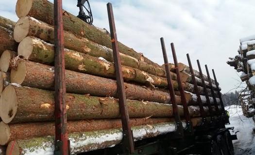 Výkup dřeva a jiné dřevní hmoty Tábor