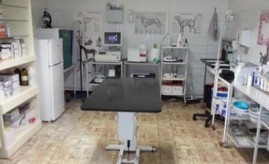Veterinární ordinace Nový Bor - kompletní veterinární péče