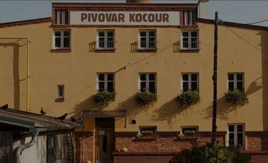 Pivovar Kocour Varnsdorf, minipivovar s pivovarskou restaurací a hotelem, výroba pivních speciálů